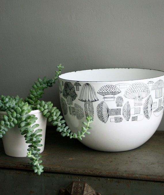 succulent & finel mushroom bowl--i totally have that bowl. :D