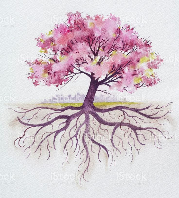 Oak Tree With Roots Tattoo: Image Result For Watercolor Oak Tree