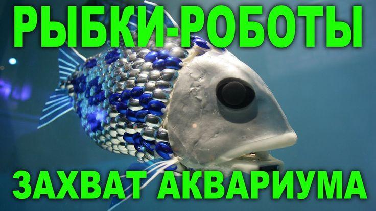 Роборыбка. Механизированные рыбы, купаем в ванной и аквариуме.
