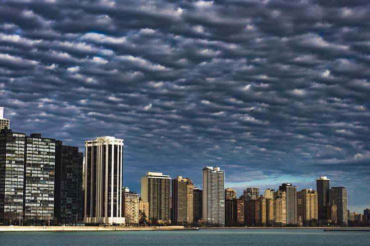 Final Desat Chicago.jpg
