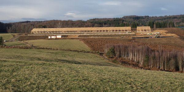 Mille veaux engraissés sur le plateau de Millevaches - Wikiagri.fr