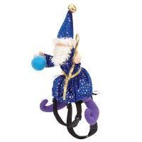 wizard-saddle-halloween-dog-costume-1.jpg