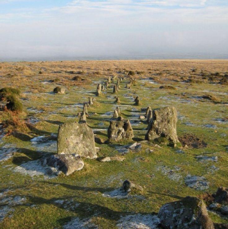 Okehampton, Okehampton, England - Neolithic cairn and triple stone row/ avenue on Dartmoor located on the lower eastern slope of Cosdon Hill