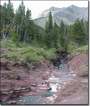 Red Rock Canyon, Waterton Park, Alberta. Great place to submerge in the pools of COLD water on a hot summer day. Nice short hikes in the area.