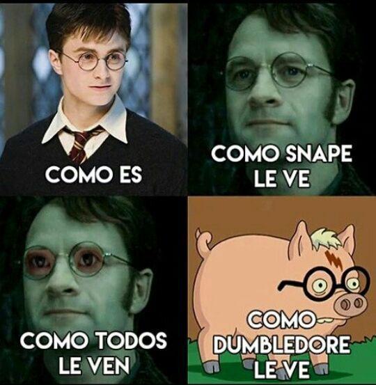 Memes Harry Potter - Cerdo Potter - Wattpad