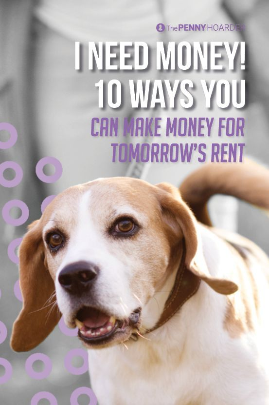 """Are you pulling your hair out screaming """"I need money!"""" on the first of the month? Fear not, we've put together a list of ways to help pay the rent."""