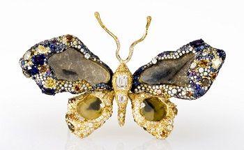 Una farfalla da museo
