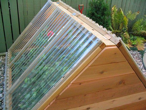 A new mini-greenhouse that my Mom added to her garden in fall of 2005. I think she usually grows tomatoes in there these days.