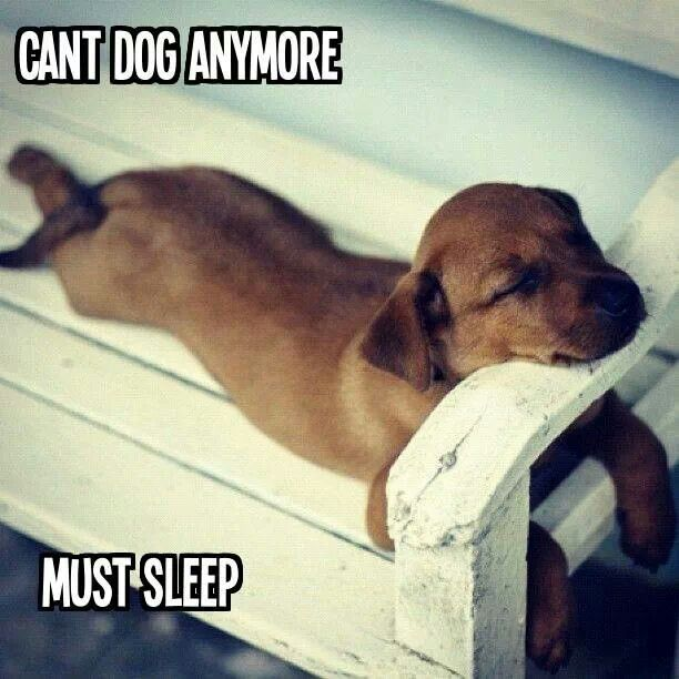 Poor thing!! :)