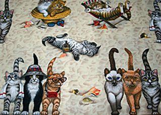 atletik kediler, yüzme kediler, yüzmek yüzgeçleri kediler, balık kediler, denizde kediler, mavi kedi kumaş, kediler balık
