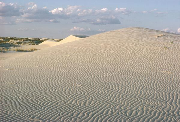 Monahans Sandhills State Park - Texas = The white sand landscape is always shifting, so one visit is never enough.  camping, hiking, picnic, horseback riding, bird & wildlife watching, interpretive center, sand surfing, equipment rentals, ranger programs