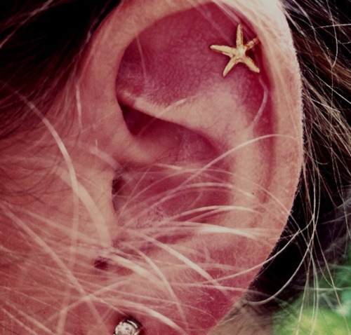 um, yess!!!Cartilage Earrings, Style, Beautiful, Ears, Jewelry, Cartilage Piercing, Accessories, Tattoo, Starfish Earrings