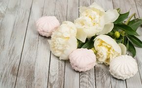 Wallpaper marshmallows, valentine`s day, wood, peonies, white, romantic, buds, peonies, flowers