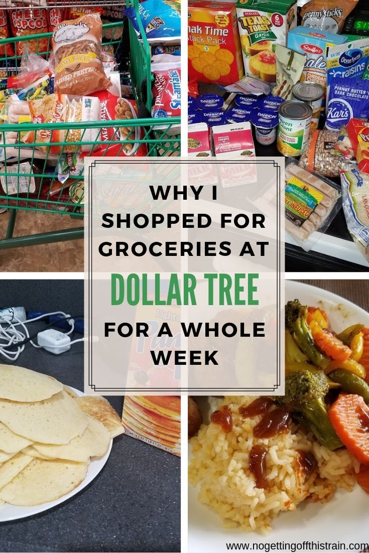Why I Shopped For Groceries At Dollar Tree For A Whole Week