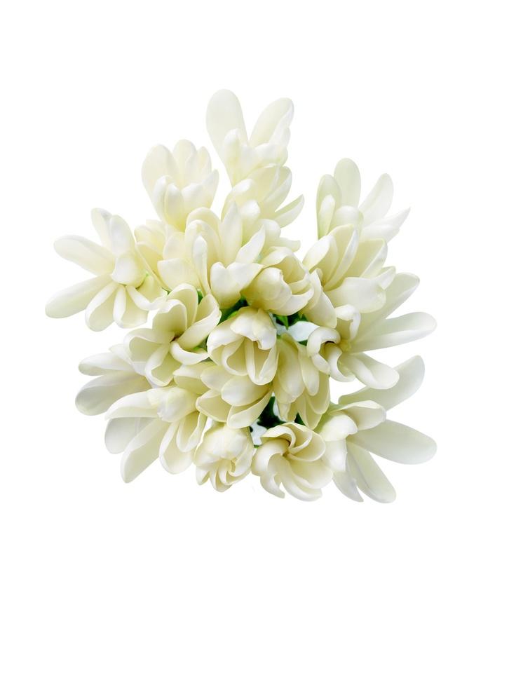 Como la caricia de una brisa exótica, las flores de tiaré aportan ese aroma paradisiaco a la línea de MONOI