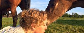 Die Wahrheit im Pferdetraining: Es gibt keinen einfachen Trick und kein Hilfsmittel ist die Lösung. Es gibt nur euren Weg, euch und euer Pferd. Schaut, wie ihr eure Beziehung verbessern könnt - denn das ist der einzige und echte Weg zu einer Einheit mit dem Pferd - sagt die Pferdepsychologin Herdis Hiller im letzten Tei unserer Serie über die Seele der Pferde und wie wir sie erreichen können