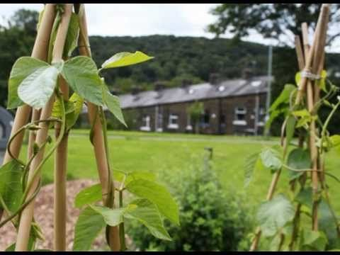 Mary is part of Incredible Edible Todmorden, a community growing project