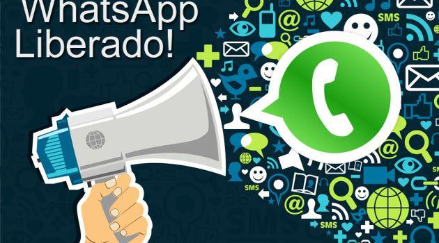 WhatsApp Ligacoes LIberadas para Todos