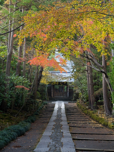 Precincts of the temple -- Kamakura