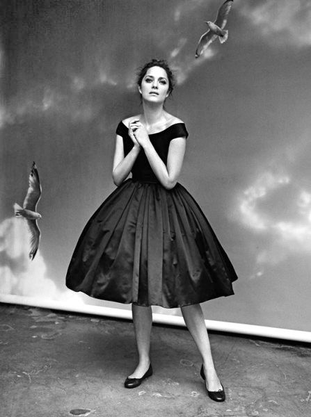 (3) Tumblr: Artists, Magnifiqu Marion, Fashion, Reports Ruven Afanador, Hollywood Reports Ruven,  Crinolin, Hollywood Reporterruven, Marion Cotillard, Dresses Dresses
