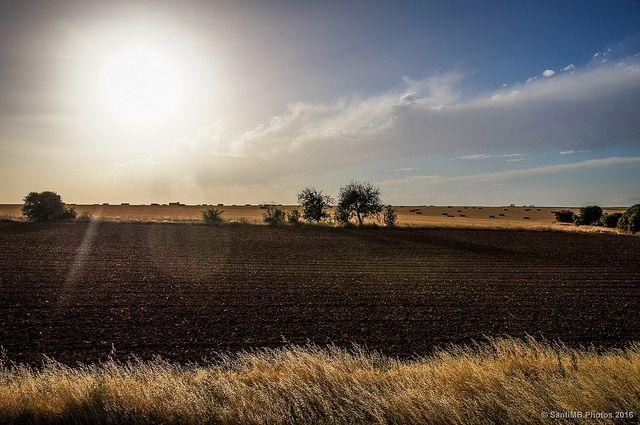 El tórrido sol del verano castellano | SantiMB.Photos