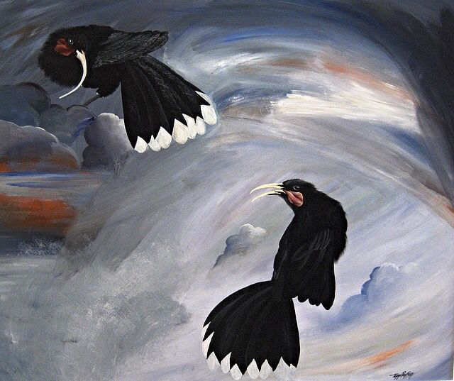 """""""Reflections of Elevated Observations"""" New Zealand Huia, Tammie Riddle, Acrylic on Board, 2015, $1350 NZD   www.tammieriddleartist.com"""