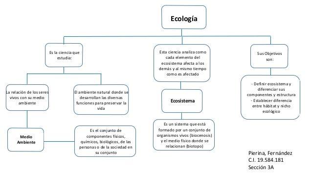 Mapa Conceptual Breve De Ecologia Y Ecosistemas Buscar Con