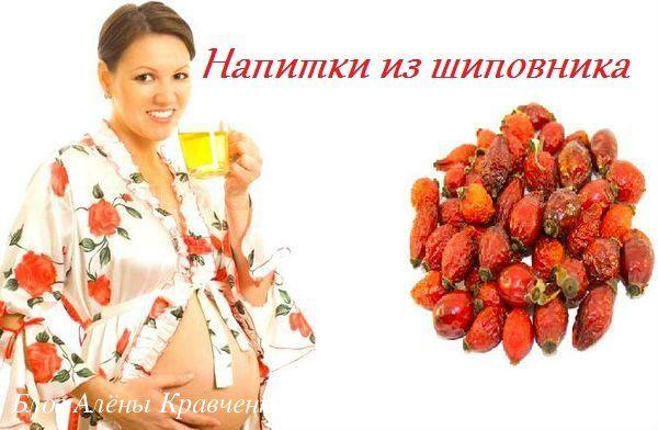 Напитки из шиповника при беременности. Как заваривать чай, настой, отвар. Польза, лечебные свойства шиповника при беременности. Противопоказания.