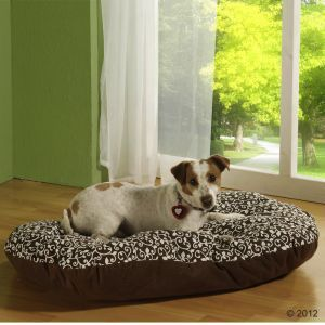 Elegante cuscino marrone fantasia per cani, colori e imbottitura naturali #CucciaJackRussel #CucciaCane #Cuccia #JackRussel http://www.principini.it/prodotti/cani/elegante-cuscino-marrone-fantasia-per-cani-colori-e-imbottitura-naturali