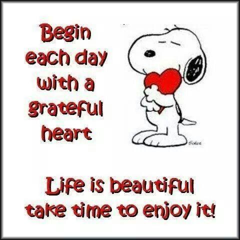 Life is beautiful, take time to enjoy it!