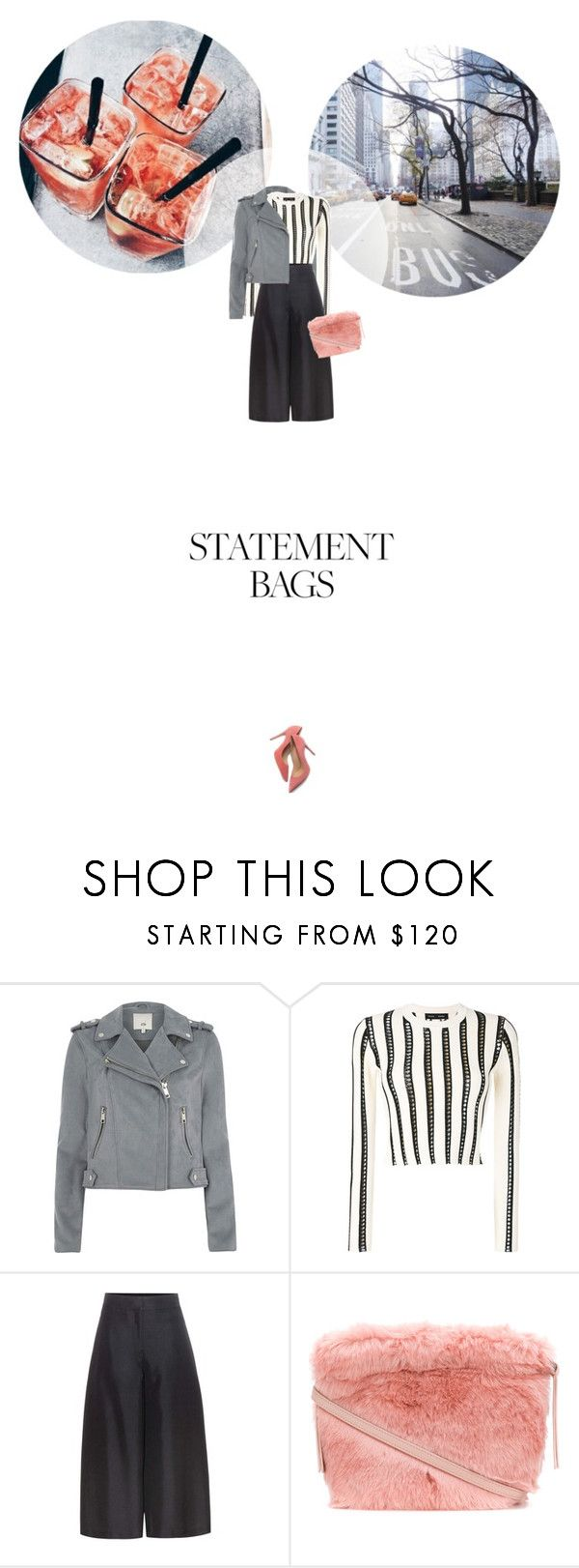 // 1327. Carry On: Statement Bags. by lilymcenvy on Polyvore featuring Proenza Schouler, River Island, Valentino, M. Gemi, Furla and statementbags