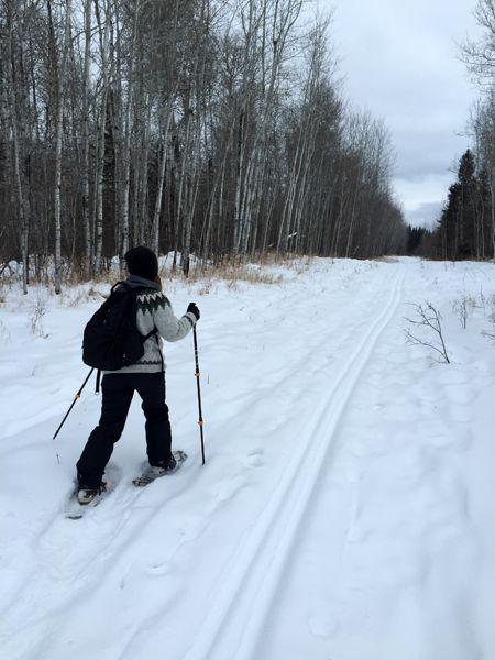 Walking…er…Snowshoeing in the Winter Wonderland of Meadow Lake Provincial Park