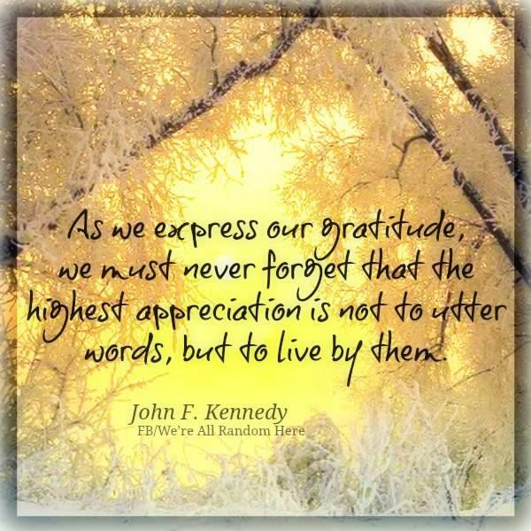 John F Kennedy Gratitude Quote: 91 Best Images About Gratitude On Pinterest