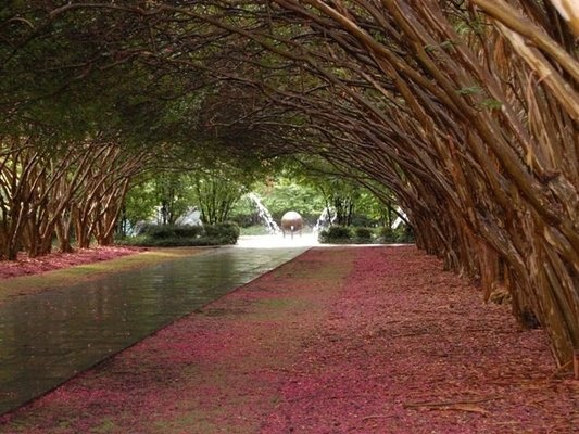 """The Dallas Arboretum and Botanical Garden"" - Dallas, Texas."