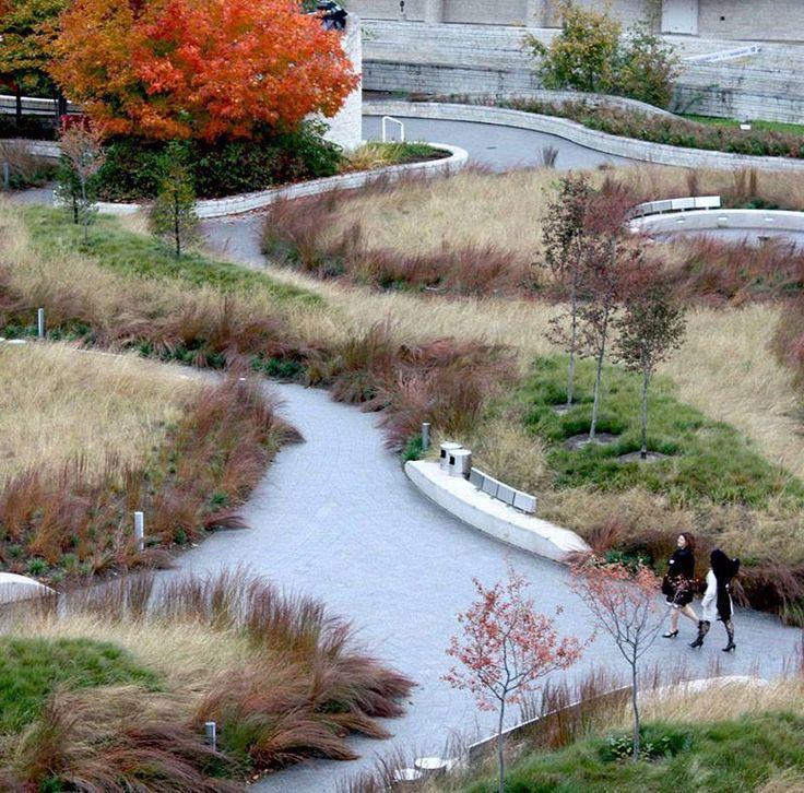 113 best ideas about piet oudolf on pinterest gardens for Piet oudolf landscape architect