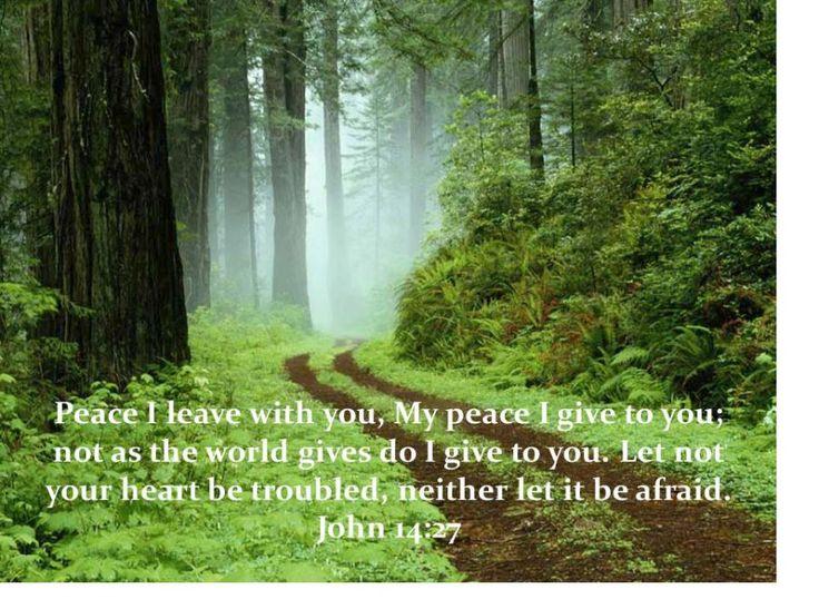 John 14: 27