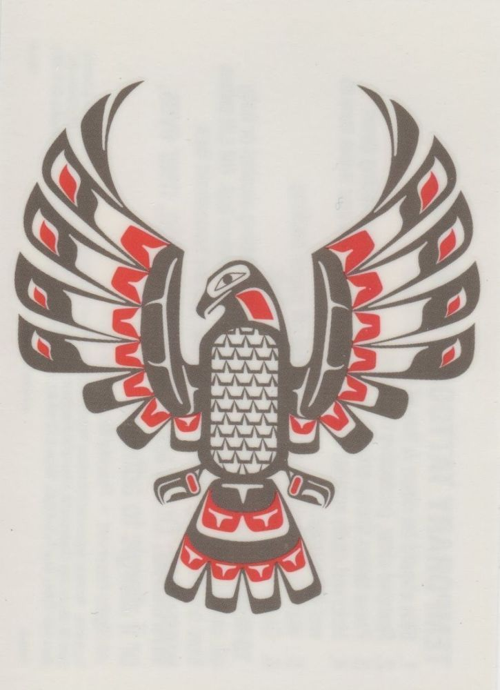 native american zodiac falcon - Google Search