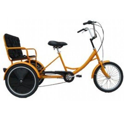 7eeb20244b5 Family Transporter Trike - 2 Passenger 6 Speed Tricycle Trike Bicycle,  Cargo Bike, Three