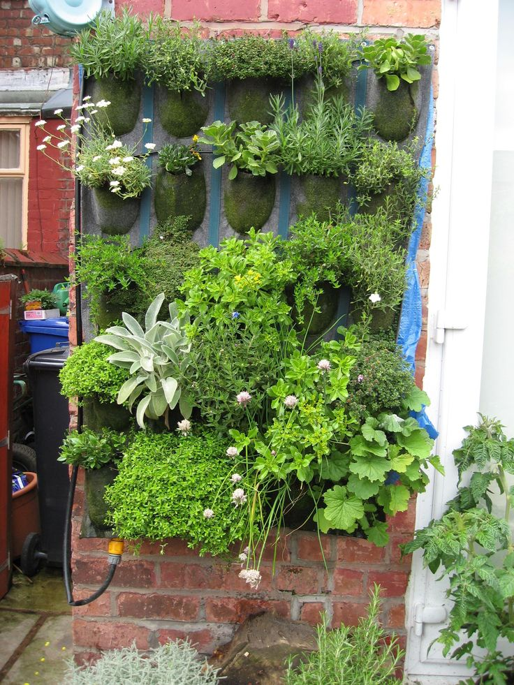 20 best vertical garden and upside down planters images on Pinterest ...
