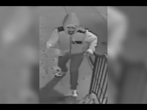 Thief Swipes Picture, Cash from South Street Cheesesteak Shop | NBC 10 Philadelphia