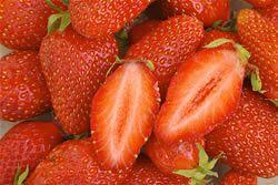 Erdbeeren auf dem Balkon - Pflege von Erdbeerpflanzen - Hausgarten.net
