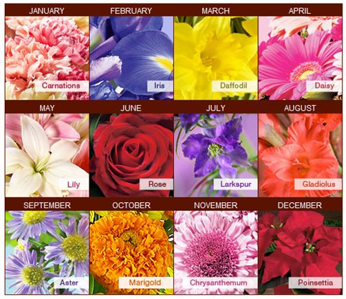 Although this image displays one particular flower for each month, we have up to four different types of flowers representing the month we were all born... an ideal placement in the center of a gift wrapped bow!
