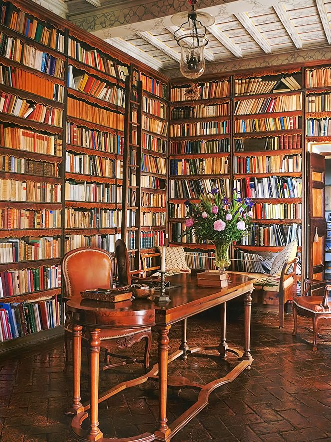 home library. All it needs is a bookshelf with a hidden lever and a secret passage way..