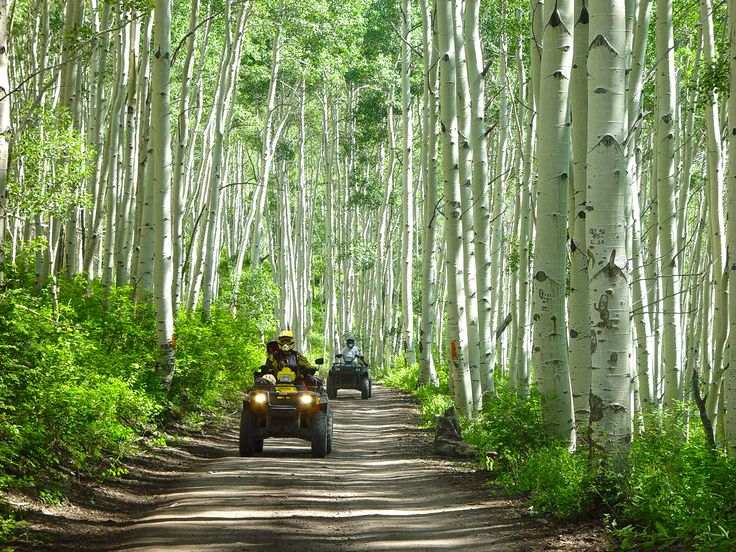 The Paiute Trail is one of the best ATV trails in the country. Find out more…