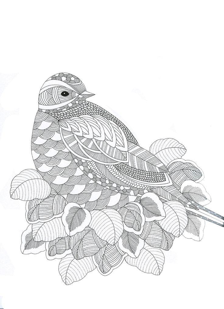 Animaux fantastiques Bird Abstract Doodle Zentangle Paisley Coloring pages colouring adult detailed advanced printable Kleuren voor volwassenen coloriage pour adulte anti-stress kleurplaat voor volwassenen