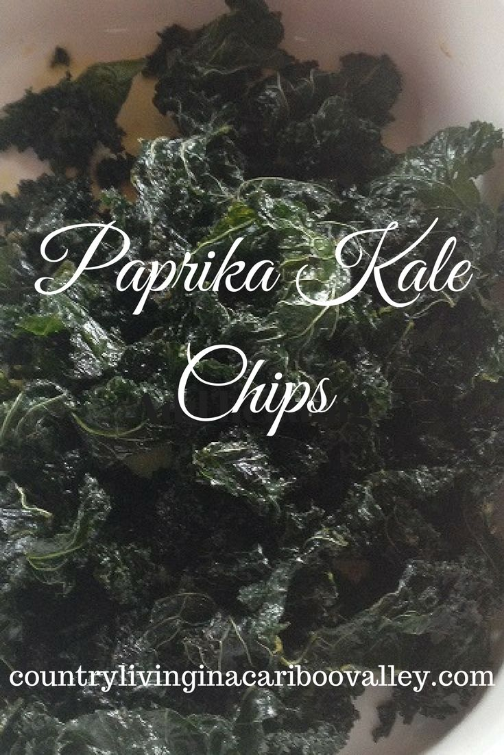 We dehydrated these Paprika Kale Chips in my Excalibur dehydrator. Delicious and better for you than potato chips.