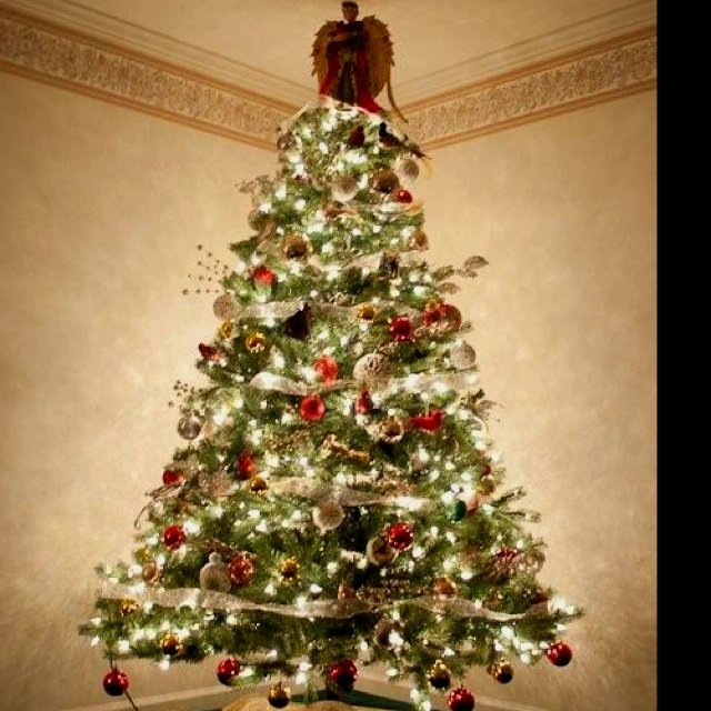 Bird themed Christmas tree. | For the Home | Pinterest