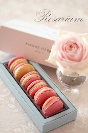 Macarons . . . Pierre Hermé, Paris