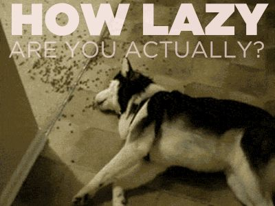 How Lazy Are You Actually?  Congratulations, you are the perfect level of lazy: SUPER LAZY. Who cares if you skip a social event or seven? You have better things to do. Like nothing.