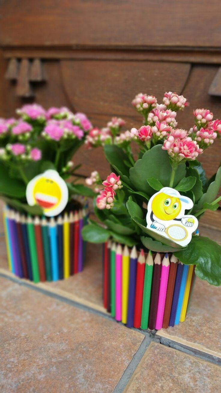 Kalanchoe în suport din creioane colorate :)